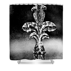 Court Jester Shower Curtain by Scott Pellegrin