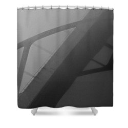 D. Hoan Shower Curtain