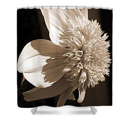 Dahlia Named Platinum Blonde Shower Curtain by J McCombie
