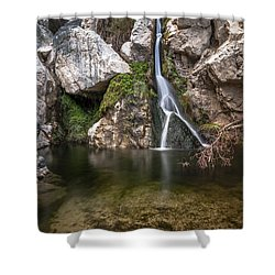 Darwin Falls Shower Curtain by Cat Connor