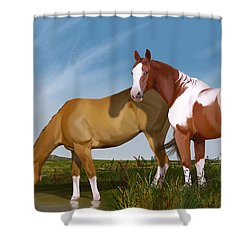 Destiny On Buffalo Plateau Shower Curtain