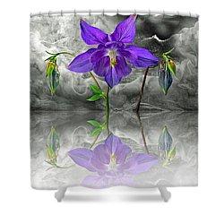 Dream Shower Curtain by Manfred Lutzius