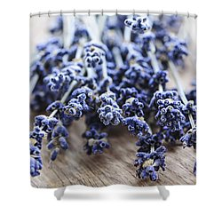 Dried Lavender Shower Curtain by Elena Elisseeva