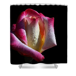 Elegance Shower Curtain by Doug Norkum