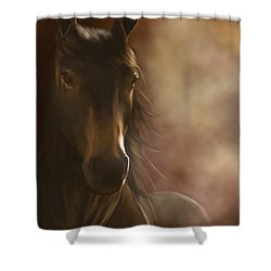 Feeling The Warmth Shower Curtain by Kate Black