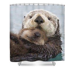 Female Sea Otter Holding Newborn Pup Shower Curtain