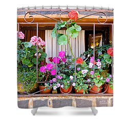 Flowers In A Mexican Window Shower Curtain