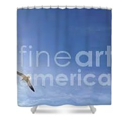 Free Shower Curtain by Laurie L