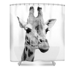 Giraffe On White Background  Shower Curtain