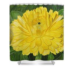 Golden Punch Shower Curtain