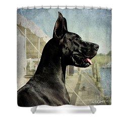 Great Dane Shower Curtain by Fran J Scott