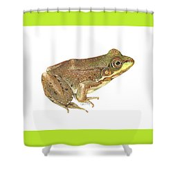 Green Frog Shower Curtain by Cindy Hitchcock