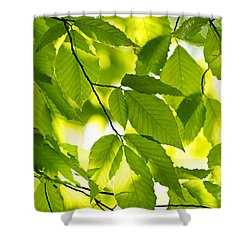 Green Spring Leaves Shower Curtain