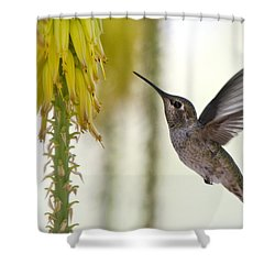 Happy Wings  Shower Curtain by Saija  Lehtonen