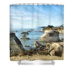 Hazy Lazy Day Pismo Beach California Shower Curtain by Barbara Snyder