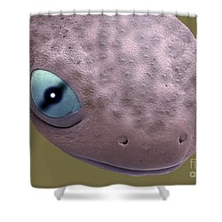 Head Of A Young Newt Sem Shower Curtain by Steve Gschmeissner