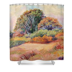 Shower Curtain featuring the painting Henry's Backyard by Patricia Piffath