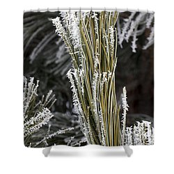 Hoar Frost Shower Curtain by Steven Ralser