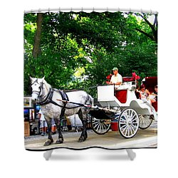 Horse And Carriage In Central Park Shower Curtain
