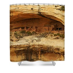 Horse Collar Ruins Shower Curtain by Jeff Swan