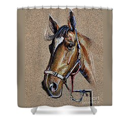 Horse Face - Drawing  Shower Curtain