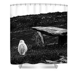 Irish Standing Stones Shower Curtain by Patricia Griffin Brett
