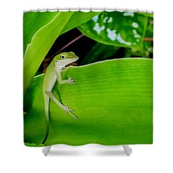 It's Easy Being Green Shower Curtain by TK Goforth