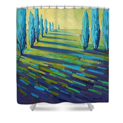 Lapis Shower Curtain