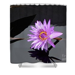 Lavender Lily Shower Curtain by Eric  Schiabor