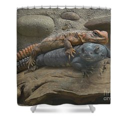 Lizard Love Shower Curtain by Carla Carson