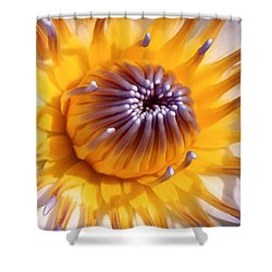 Lotus Lily Shower Curtain