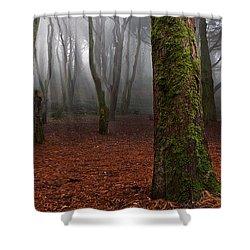 Magic Light Shower Curtain by Jorge Maia