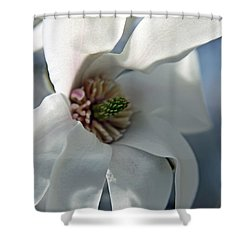 Magnolia In Watercolor Shower Curtain by Carolyn Stagger Cokley