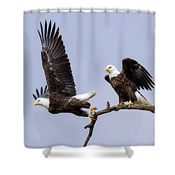 Majestic Beauty 2 Shower Curtain
