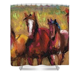 Mares And Foals Shower Curtain by Frances Marino