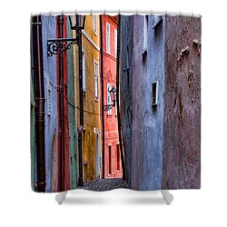 Medieval Alley Shower Curtain