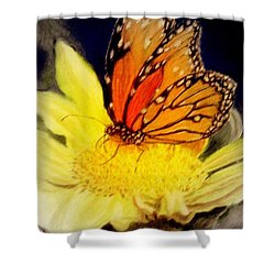 Monarch Resting Sold Pastel Shower Curtain