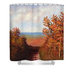 Mountain View Shower Curtain by Jason Williamson
