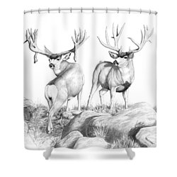2 Muley Bucks Shower Curtain