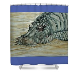 Nap Time Shower Curtain by Anne Buffington