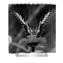 Nature Looking Glass  Shower Curtain