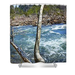 Shower Curtain featuring the photograph Nemo Rapids by Paul Mashburn