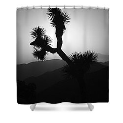 New Photographic Art Print For Sale Joshua Tree At Sunset Black And White Shower Curtain