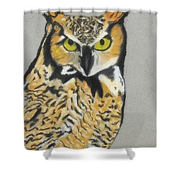 Shower Curtain featuring the painting Night Owl by Jeanne Fischer