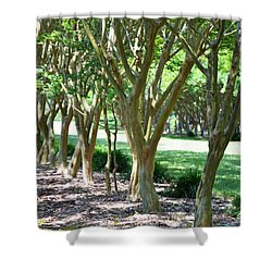 Norfolk Botanical Garden 6 Shower Curtain by Lanjee Chee