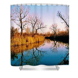 Shower Curtain featuring the photograph November by Daniel Thompson