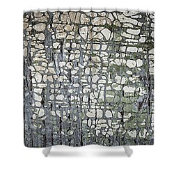 Old Painted Wood Abstract No.6 Shower Curtain by Elena Elisseeva