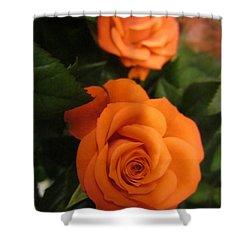 Orange Delight Shower Curtain