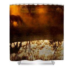 Shower Curtain featuring the photograph Orange Mist by Joan Davis