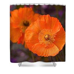 Orange Poppies Shower Curtain by Rona Black